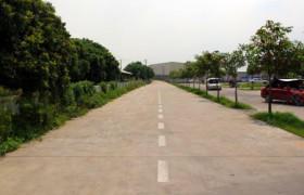 仓龙驾校教学环境-训练场