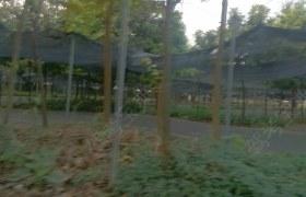 安通驾校教学环境15